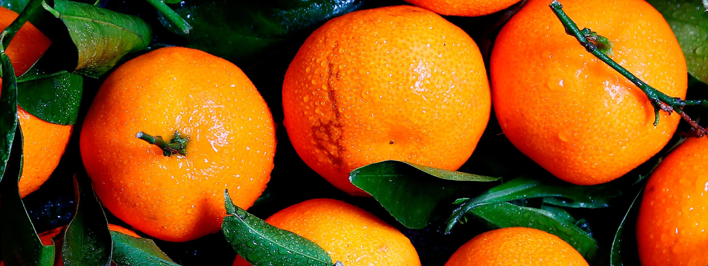 Naranjas La fruta en casa